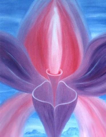 orchideah