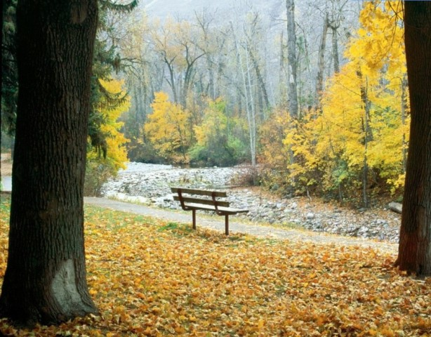 autunno47