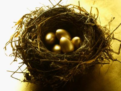 Nest with Golden Eggs