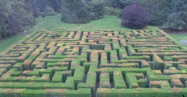 The_maze_at_Traquair