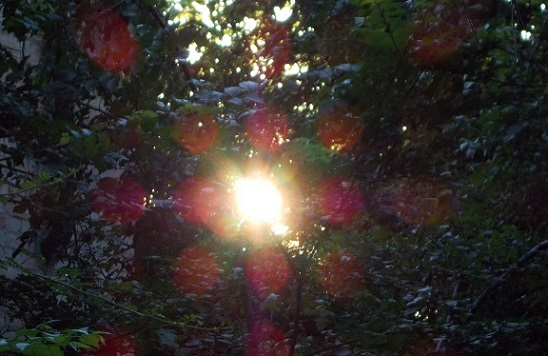 SOLEROSACROCE    GIU 2013 FK 077(1)